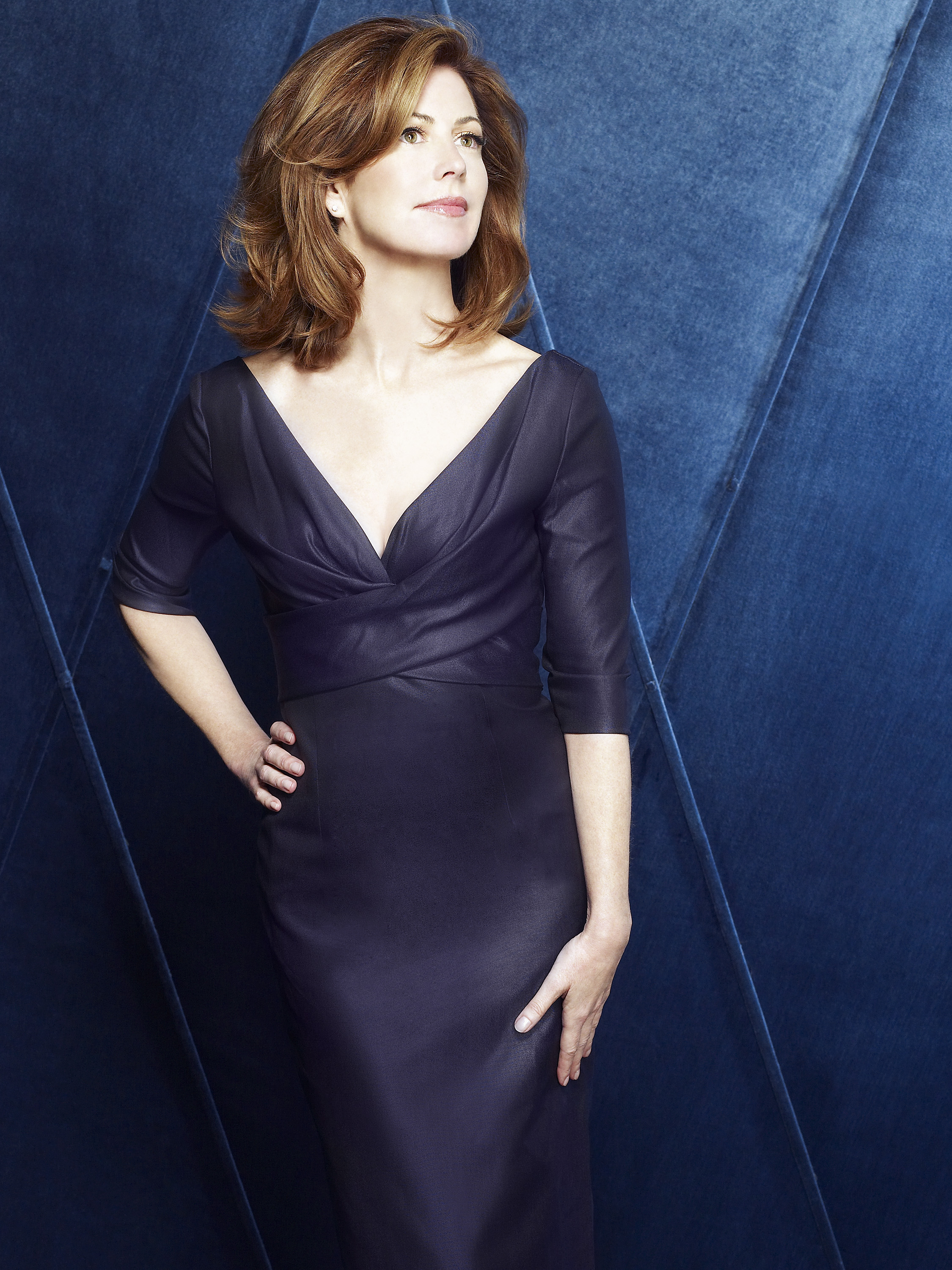 Dana delany desperate housewives realize, told