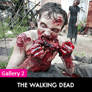 the-walking-dead-tv-series-cast-photos-pictures-dvdbash-2