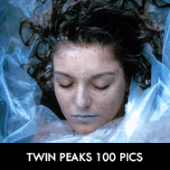 Twin Peaks TV Series starring Kyle MacLachlan, Michael Ontkean, Mädchen Amick, Dana Ashbrook, Lara Flynn Boyle, Sherilyn Fenn, Peggy Lipton, Everett McGill, Joan Chen, Sheryl Lee, Michael J. Anderson, Heather Graham,David Lynch – dvdbash.wordpress.com