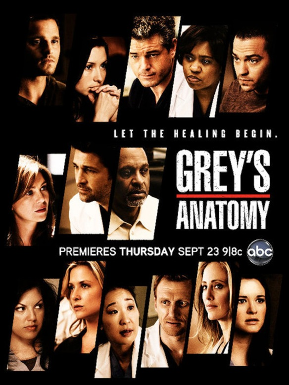 Grey\'s Anatomy Seasons 7 and 8 and 9 Promo Pictures | DVDbash