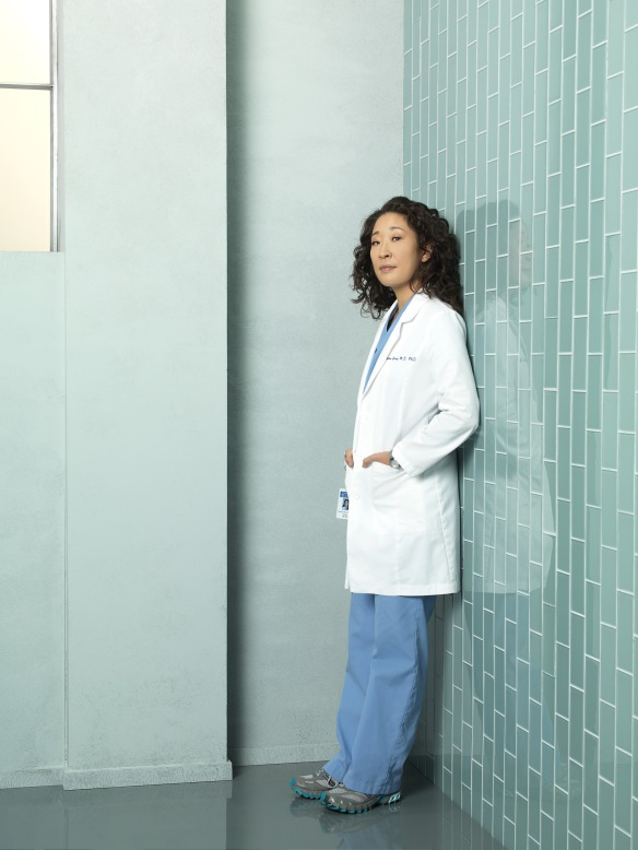 Greys Anatomy Seasons 7 And 8 And 9 Promo Pictures Dvdbash
