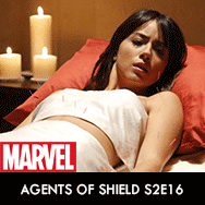 MARVEL-Agents-of-SHIELD-TV-Series-Season-2-Episode-16-Afterlife-Promo-Pictures-dvdbash